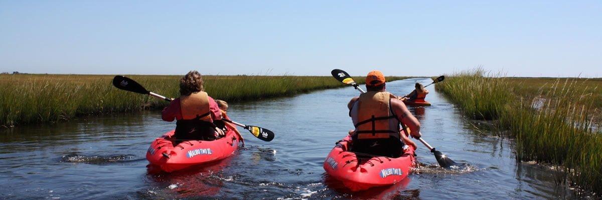 Long Beach Island Nj Kayak Rentals