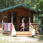 Basic Cabin Bonanza