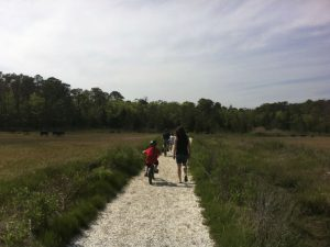 Read more about the article Walking Out to the Bay – Shared Memories from August, 2009