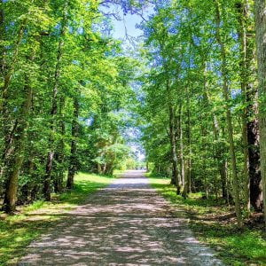 A walk through the campground, you can hear nature, kids laughing, and the crack…