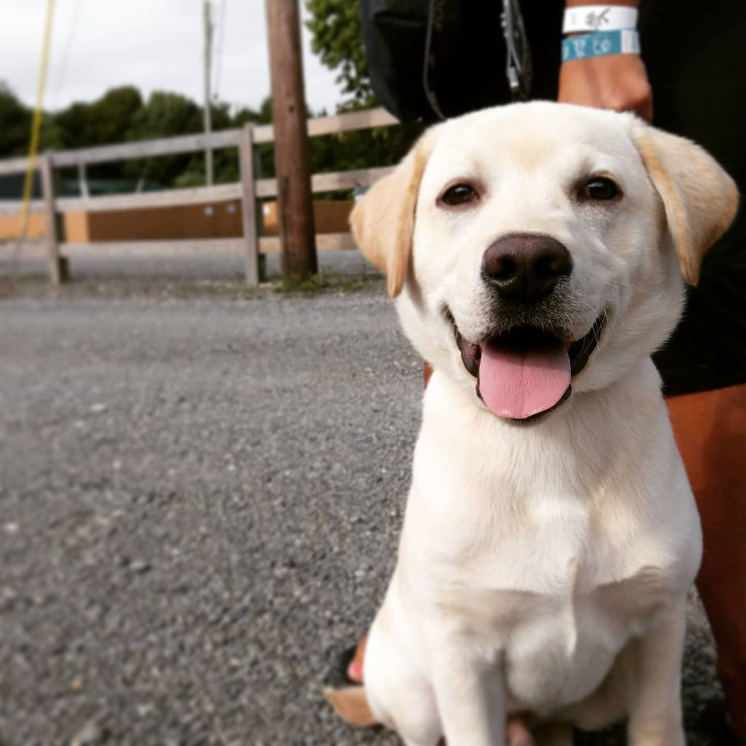 Fur babies are family and are welcome at our campground. We have a dog park wher…
