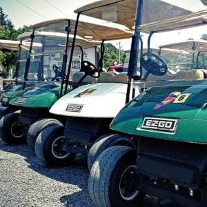 Golf carts rentals are available.  Easy way to get your family and pets around t…