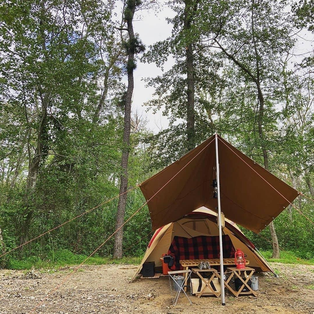 Happy campers! Thank you for sharing. あなたが私たちと一緒にあなたの休暇を楽しんでうれしいです、共有してくれてありがとう。…
