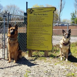 Mia and Cinder love to run and have fun in the dog park. We are a pet friendly  …