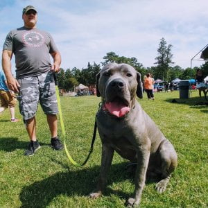 We are a pet-friendly campground. Kiwi's birthday party and school are out for s…