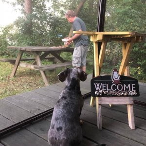 We are a pet friendly campground. Make sure to enter our contest on our website …